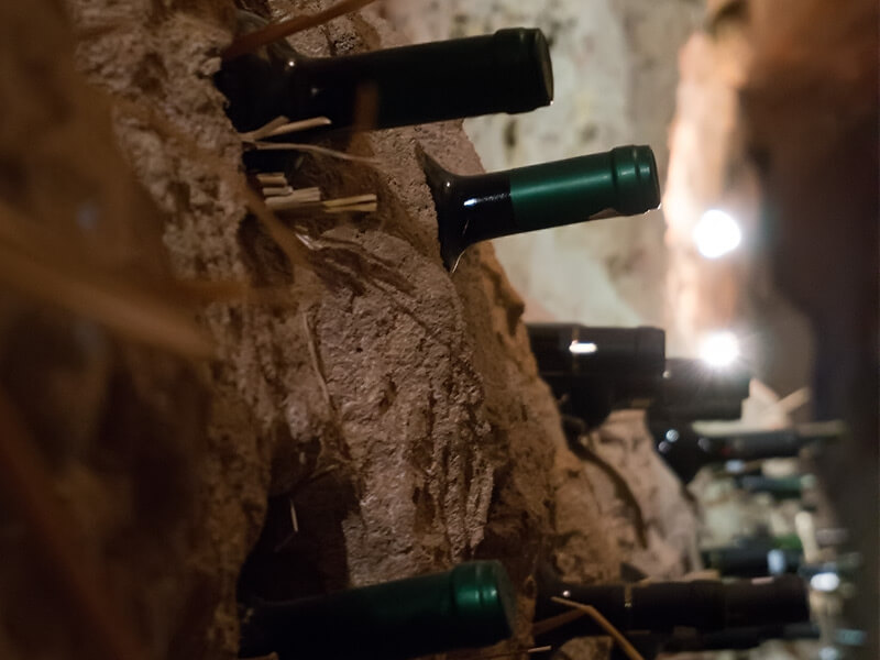 В търсене на най-хубавото мелнишко вино - малко превю