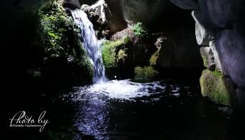 3 дни по италиански - аквариум_016